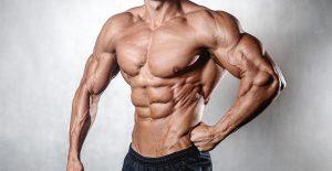 Muscle Extreme XXL nederlands - bestellen, kruidvat